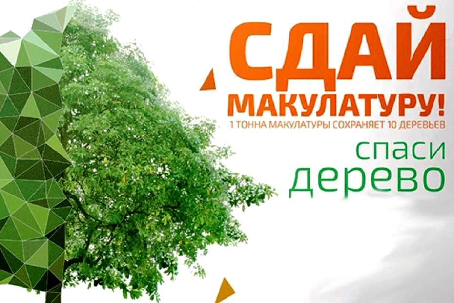 Акция «Сдай макулатуру – спаси дерево!»
