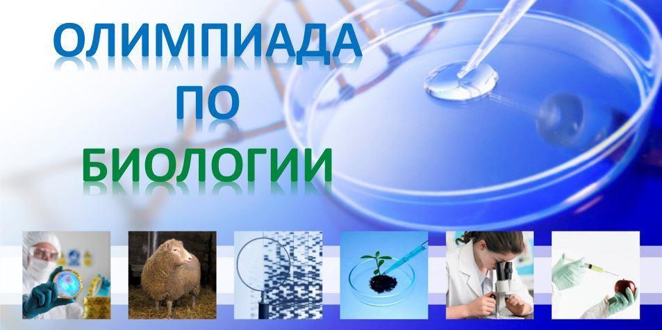 Отчет по проведению школьного этапа олимпиады по биологии.