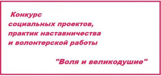 Конкурс социальных проектов и практик наставничества «Воля и великодушие» Юга России
